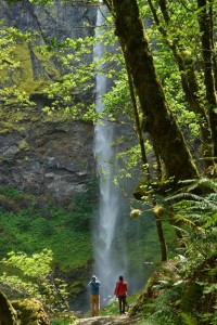 Elowah Falls-7266