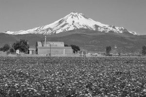 Mt Jefferson-Madras南部より-7549-BW