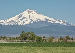 Mt Jefferson-Madras南部より-7661