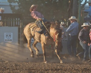 McMinnville Rodeo-Saddle Bronc Riding-4362