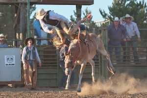 McMinnville Rodeo-Saddle Bronc Riding-4389