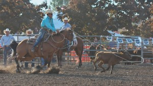 McMinnville Rodeo-Tie Down Roping-4235