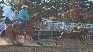 McMinnville Rodeo-Tie Down Roping-4236