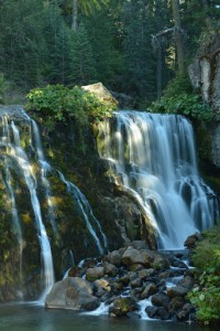 Mt Shasta - Middle McCloud Falls-5786