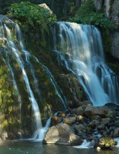 Mt Shasta - Middle McCloud Falls-5809-1