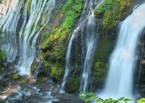 Panther Creek Falls-5454