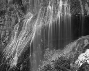 Panther Creek Falls-5462-BW