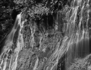 Panther Creek Falls-5481-BW