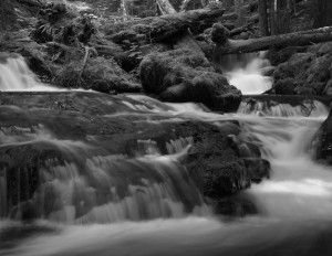 Panther Creek Falls-5514-BW