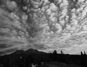 Mt Shasta - Best Western Hotelより-5863-BW-Letter