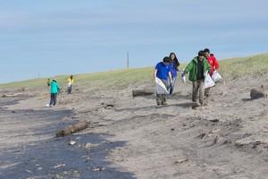 海岸清掃-2016年3月-1221