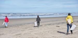 海岸清掃-2016年3月-1215