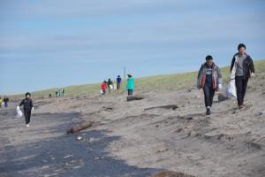 海岸清掃-2016年3月-1216