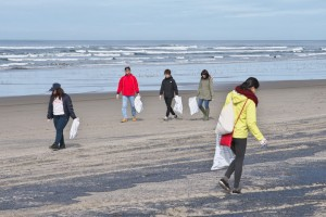 海岸清掃-2016年3月-1220