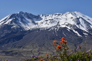 mt-st-helens-viewed-from-johnston-ridge-5751_27835022311_o