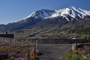 mt-st-helens-viewed-from-loowit-viewpoint-5684_27835021961_o