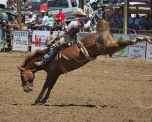 spray-rodeo-bare-back-riding-4674_26873291194_o