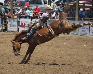 spray-rodeo-bare-back-riding-4674_26873291194_o
