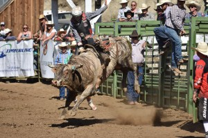 spray-rodeo-bull-riding-5284_27416030691_o