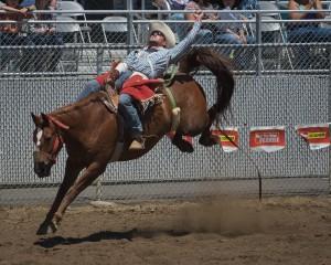 tillamook-rodeo--2016-7714_27875912311_o