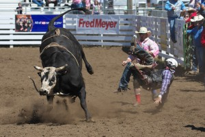 tillamook-rodeo--2016-8160_27340625724_o