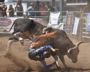 new-port-lincoln-county-fair-rodeo-bull-ride-0129-1_29215989925_o