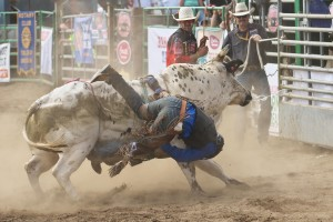 new-port-lincoln-county-fair-rodeo-bull-ride-0295_28927911780_o