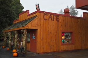 trout-lakebear-creek-cafe-3815_30426039500_o